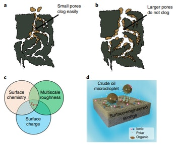 When it comes to pollutant absorbing sponges, scientists say large pores are actually a good thing.