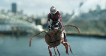 marvel studios ant man wasp netflix