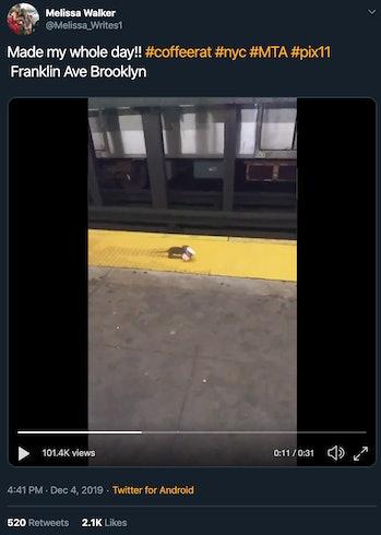 screenshot of Tweet showing rat carrying coffee cup