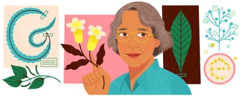 Ynés Mexía's Google Doodle, which graced the homepage of the search giant in several countries on September 15, 2019, 94 years to the day of a trip to South America where she collected some 500 plant specimens, 50 of them undiscovered up to that point by the scientific community.