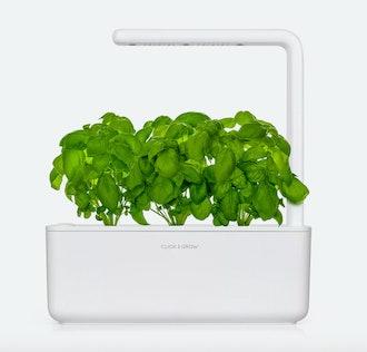 Click & Grow Mini Smart Garden
