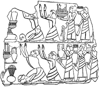 Canaanites not killed modern DNA fact check the bible science