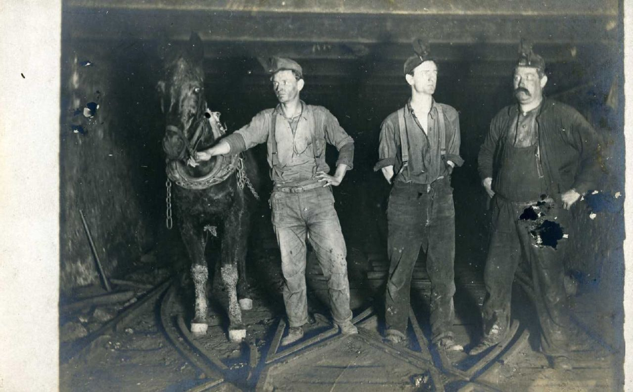 Coal miners and mule
