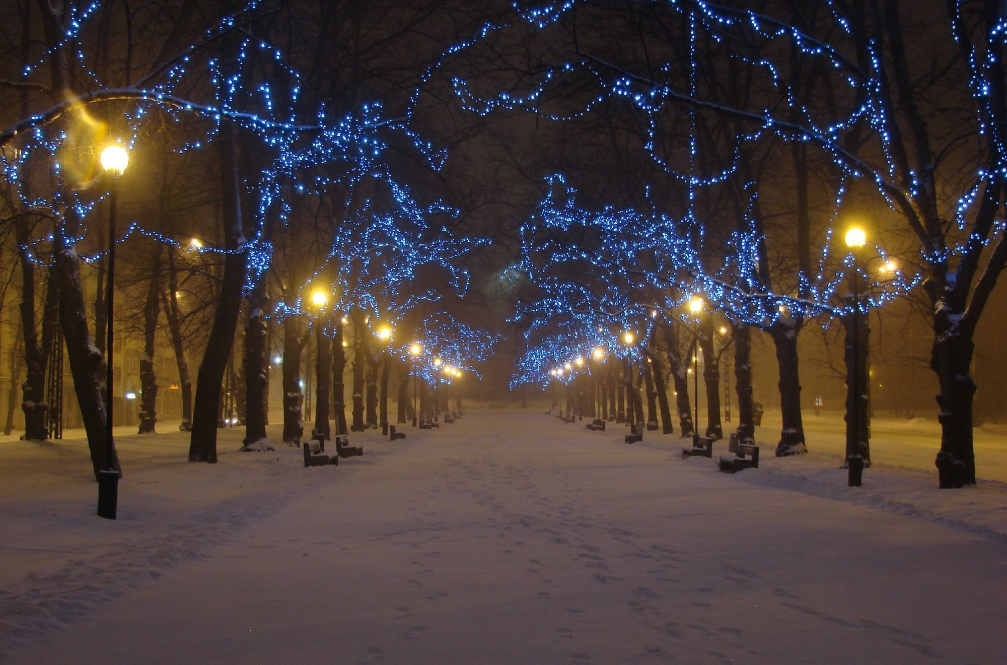 Night Alley - winter in blue