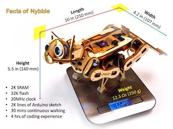 Nybble factsheet