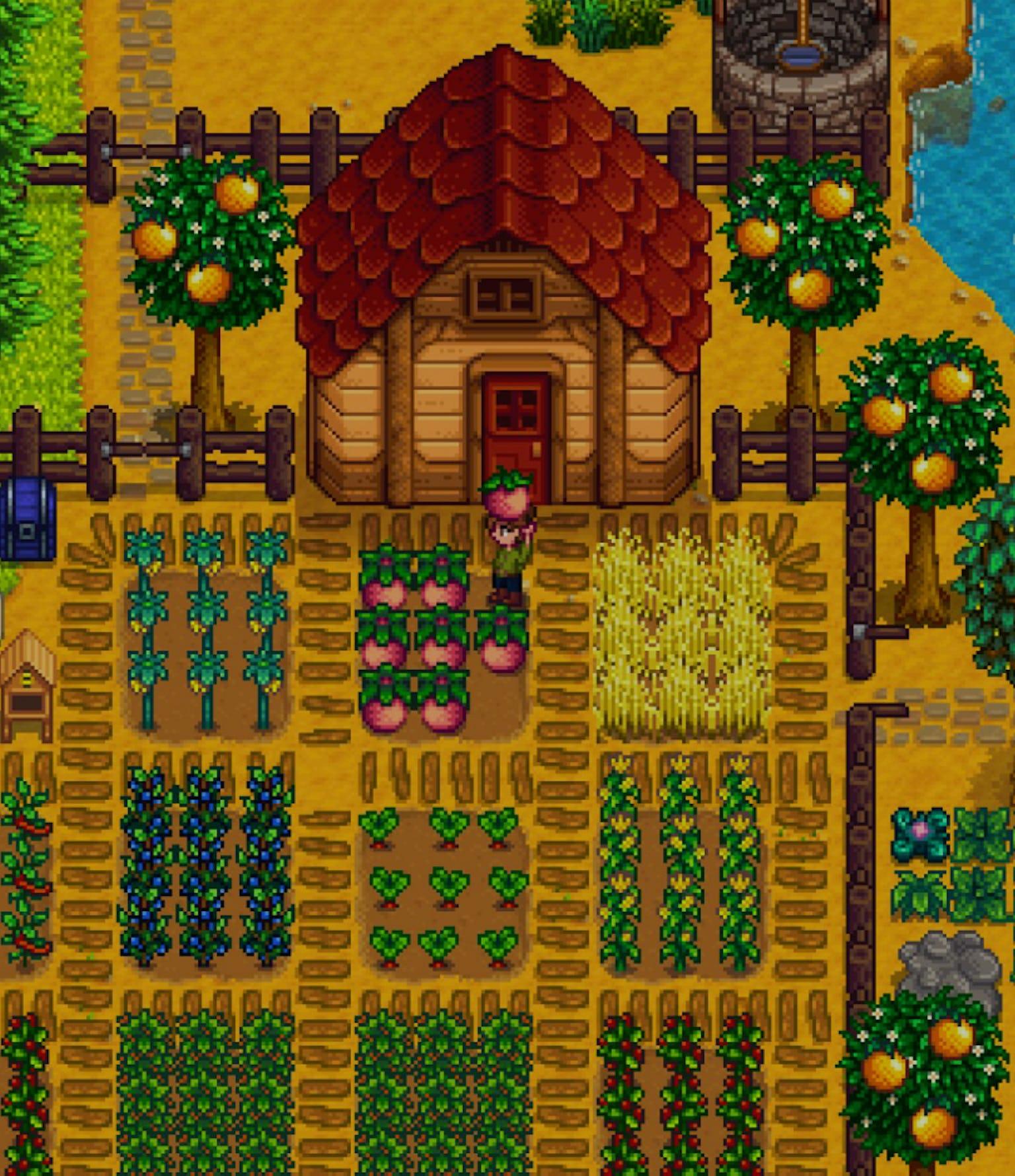Stardew Valley Massively Updated with Version 1.1   USgamer