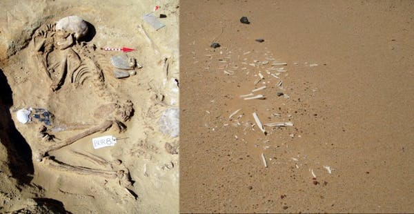 Well-preserved vs. wind‐eroded remains at Gebel Ramlah.