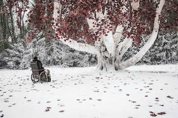 Bran at the tree where he will wait for the Night King.