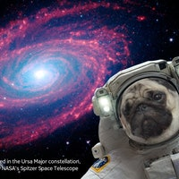 NASA's New App Will Launch Your Selfie Into Space