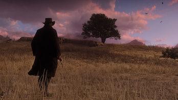 Red Dead Redemption 2 wheat field