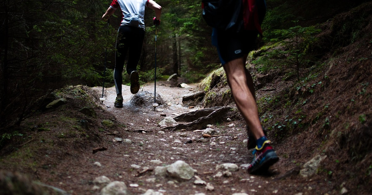 Exercise Science: Effects on Cognitive Decline Begin Earlier Than Thought