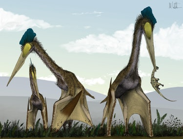 giant pterosaur ground stalking prey predator hunting