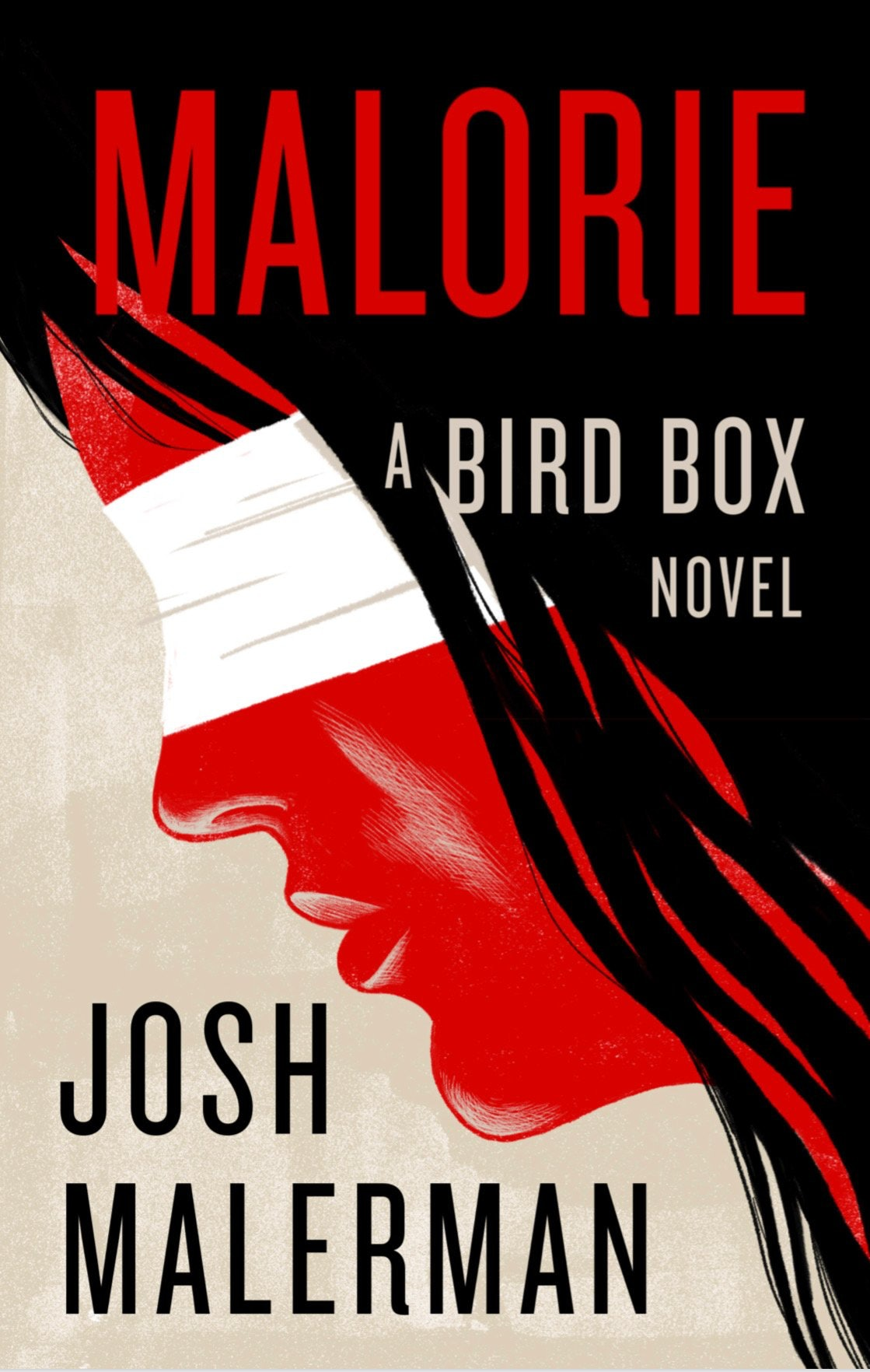 Image result for malorie a bird box novel