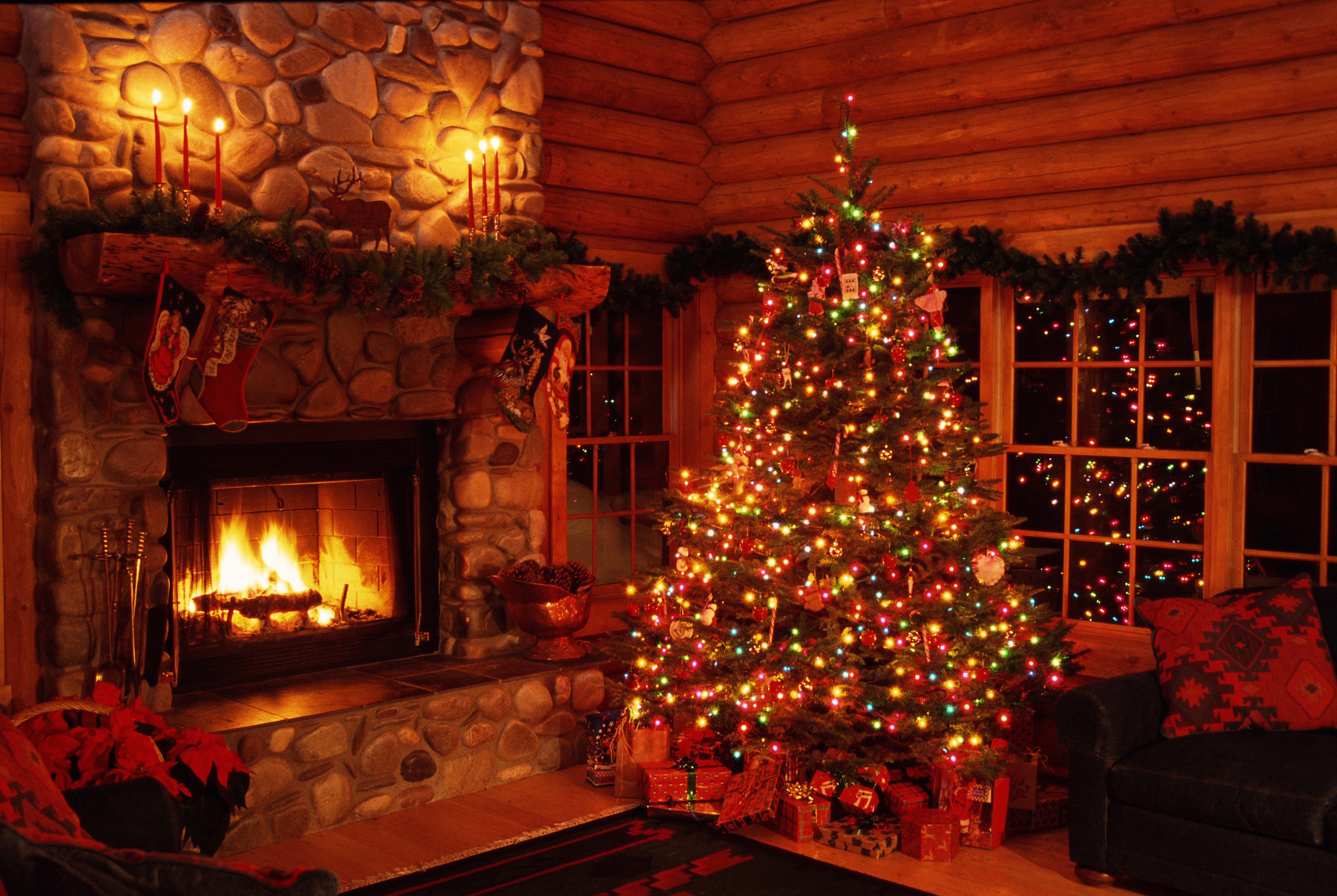 Science Explains How A Christmas Tree Turns Into A Deadly Inferno