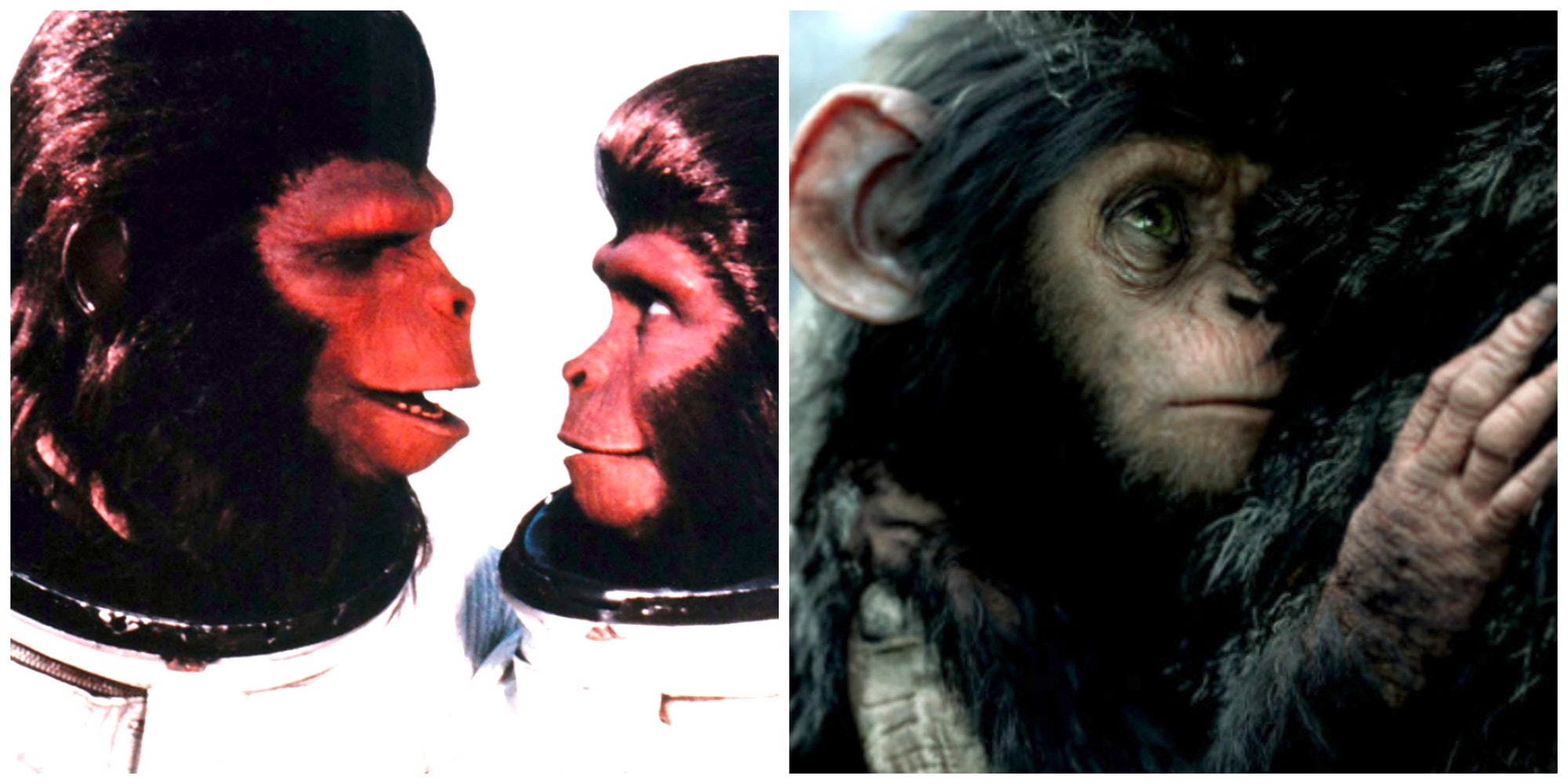 Roddy Mcdowall as Cornelius and Kim Hunter as Zira in 'Escape from the Planet of the Apes.' RIGHT: The new young Cornelius