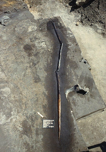 One of the Schöningen spears in its excavation site.