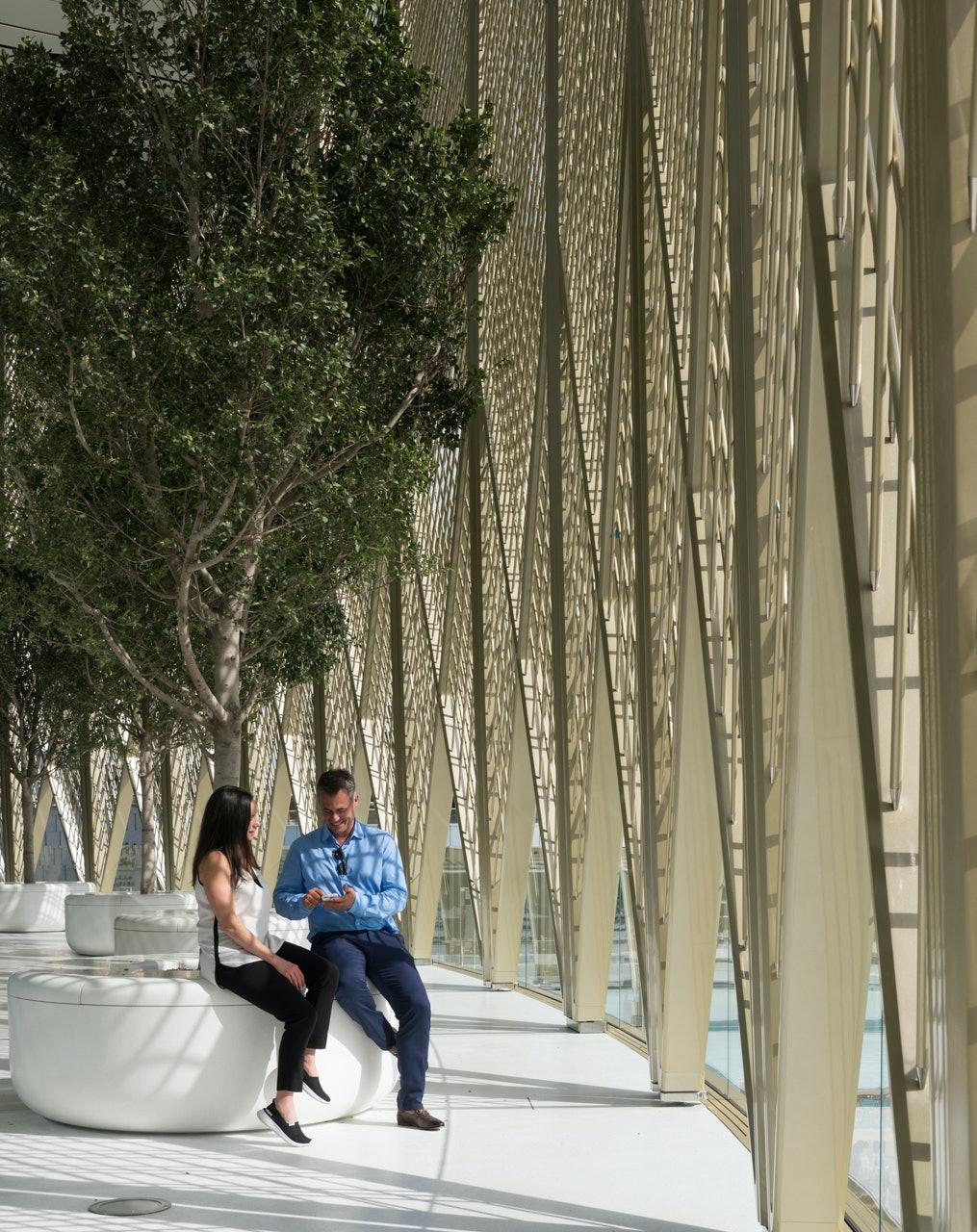 The trees provide a beautiful seating area.