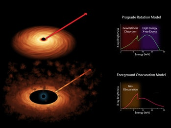 black hole spin