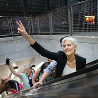 Jill Stein is Losing to Gorilla Harambe and Deez Nuts in Texas's Presidential Race