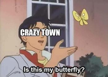 crazytown pigeon meme