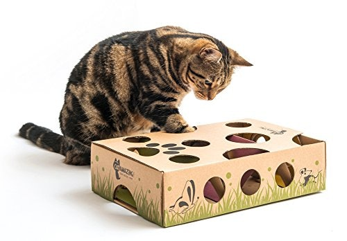 Cat Amazing – Best Cat Toy Ever! Interactive Treat Maze & Puzzle Feeder for Cats