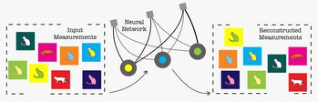 A new technique feeds experimental measurements of a quantum system to an artificial neural network. The network learns over time and attempts to impersonate the quantum system's behavior. With enough data, scientists can fully reconstruct the quantum system.
