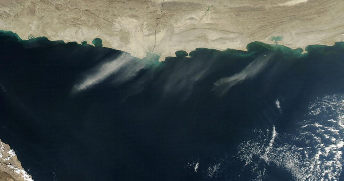"Oxygen-Free ""Dead Zone"" as Big as Scotland Discovered in Arabian Sea"