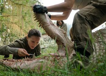 That mutated gator has some weird teeth.