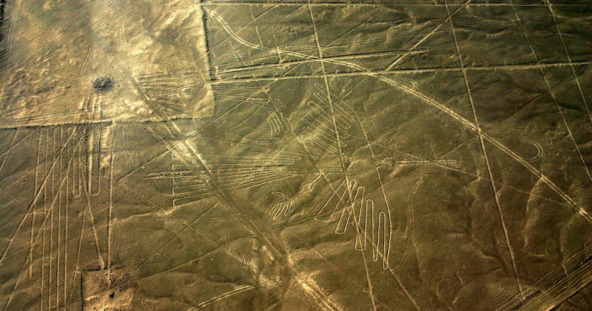 Nazca Lines: Scientists Identify Bird Species in Ancient Peruvian Geoglyphs