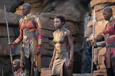 Black Panther Okoye Nakia