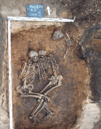 skeletons, plague