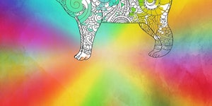 Pursuit of capyness: Why one coloring book can make a difference