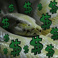 Want to Make Money? Learn Python and Become a Data Scientist