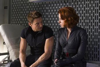 The Avengers Hawkeye and Black Widow