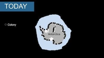 Emperor Penguin colonies