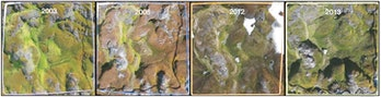 These images show how one of the sample quadrants changed over the 13-year study period. The increas...
