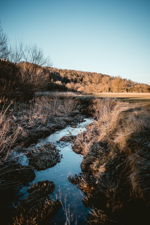 ditch stream water