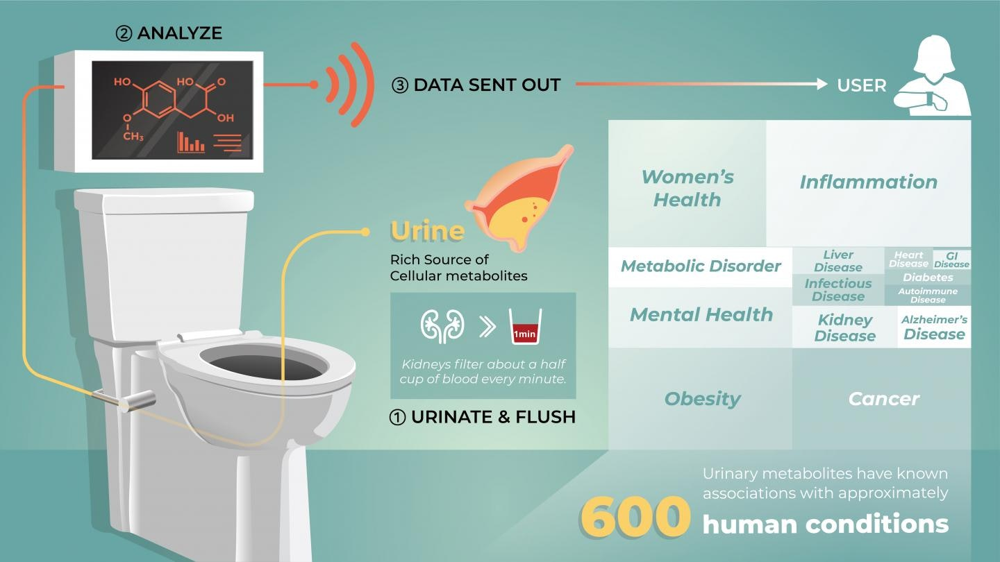 A possible smart toilet in action.