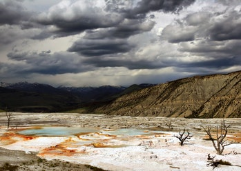 Upper terraces of Mammoth Hot Springs, Yellowstone National Park, Wyoming. Hot water is the creative...