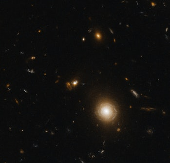 Quasar host galaxies are hard to image. They're very far away and the quasar itself is very bright. Take a look at 3C 273 and you'll see what I mean. The quasar's glow (which astronomers dryly but more accurately refer to as a point spread function) covers up the galaxy itself. Another image in the Wikipedia article shows 3C 273 with the glow subtracted, revealing the galaxy. Anyway, this one is different. I didn't have to do that, thankfully. I will point to the quasar. It is not the obvious bright spiral galaxy to the lower right. Look up and to the left of that bright spiral and find the merging galaxies. You can see the quasar itself as a bright point in the right side partition of the colliding masses. There is a lot of dust which is reddening the quasar. Hubble's view of things like this is not as good as it could be. This is a job for an infrared telescope! With a small amount of luck and the efforts of many scientists and engineers, JWST will perform this task. Maybe even this very quasar will be looked at. It will be interesting to combine the data sets from both Hubble and JWST one day. Red: ACS/WFC WFC1-1K F814W (j95w11010_drz) Green: Pseudo Blue: ACS/WFC WFC1-1K F475W (j95w11020_drz) North is NOT up. It is 22° clockwise from up.