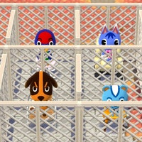Gamers Are Creating Insane Cults and Prisons in 'Animal Crossing: Pocket Camp'