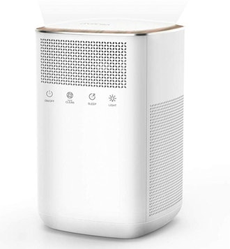 iTvanila True HEPA Filter Air Purifier