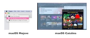 macos catalina update full screen browser