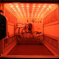 NASA Is Sending the International Space Station a New Space Farming Pod in 2017