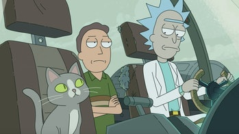 rick and morty talking cat