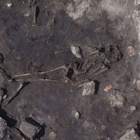 Ancient Massacre Site in Sweden Reveals Horrific History of Human Violence