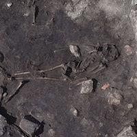 Ancient Massacre Site in Sweden Reveals Horrific History of Human Violence
