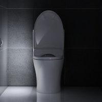 Testing the Toto Washlet S550e Electronic Bidet Toilet Seat.