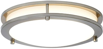 Hamilton Hills Alexa Ceiling Light