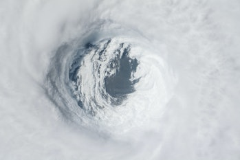 Hurricane Michael Satellite image.